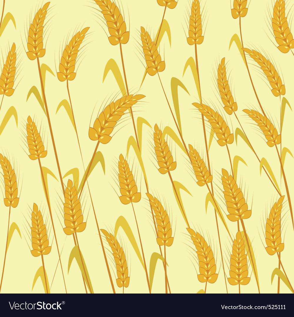 Ripe wheat vector | Price: 1 Credit (USD $1)
