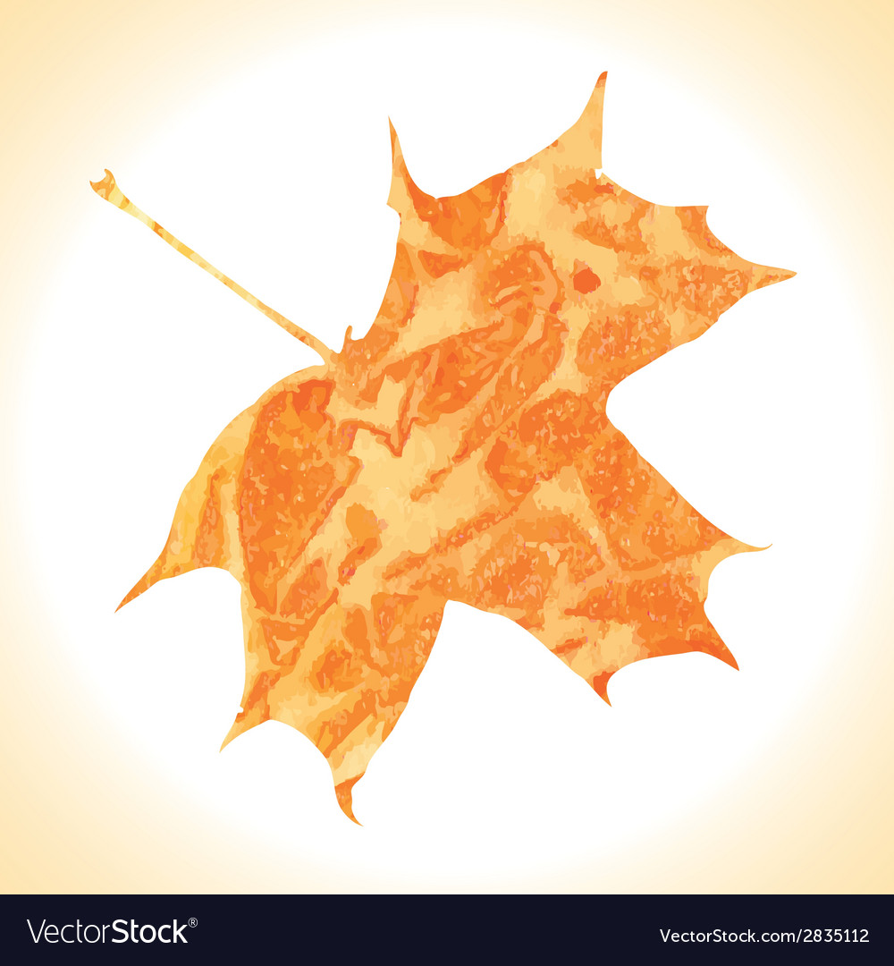Watercolor autumn maple leaf vector | Price: 1 Credit (USD $1)