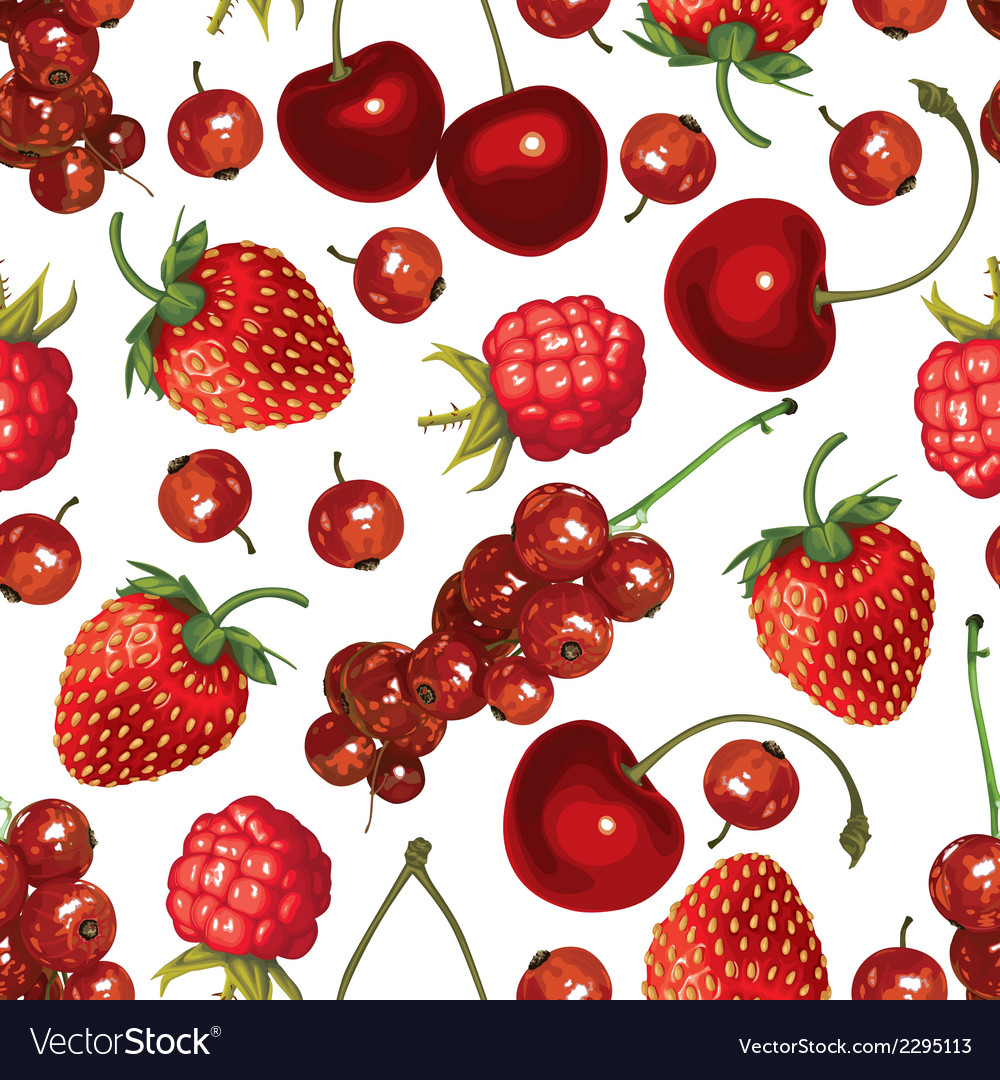 Redberry pattern vector | Price: 1 Credit (USD $1)