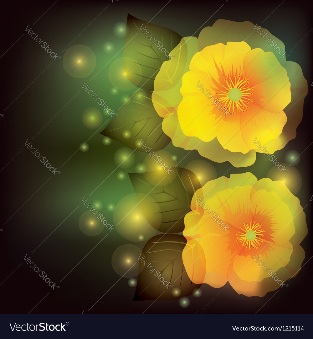 Flower poppy background greeting or invitation vector | Price: 1 Credit (USD $1)
