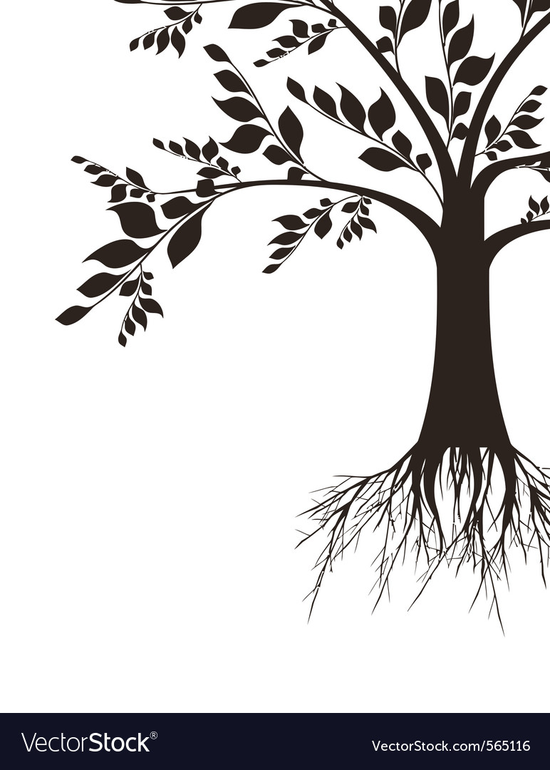 Beautiful art tree silhouette isolated on white ba vector | Price: 1 Credit (USD $1)