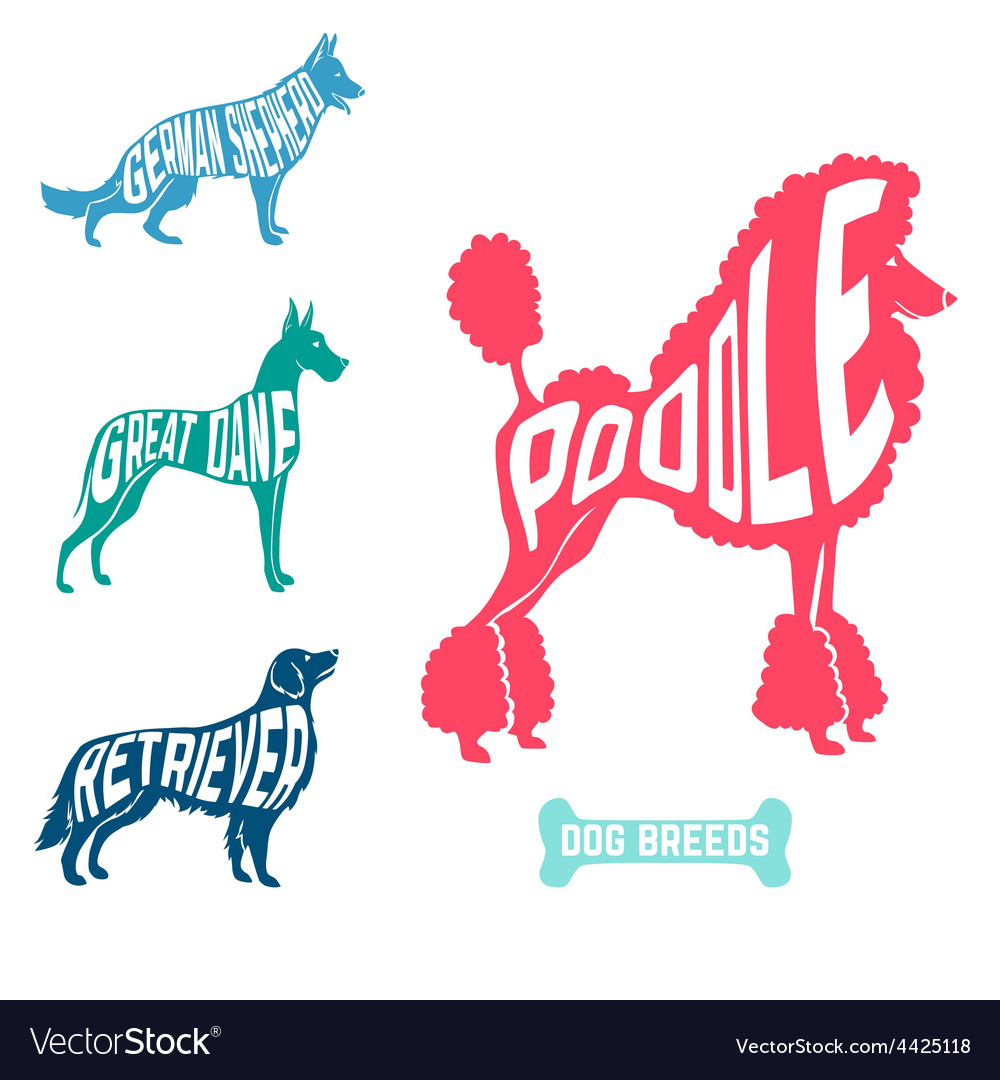 Set of dog breeds silhouettes text inside poodle vector | Price: 1 Credit (USD $1)