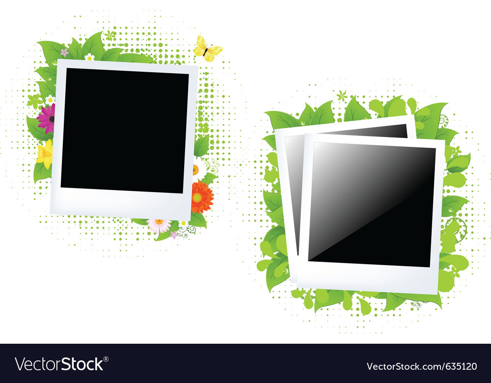 Blank photos vector | Price: 1 Credit (USD $1)