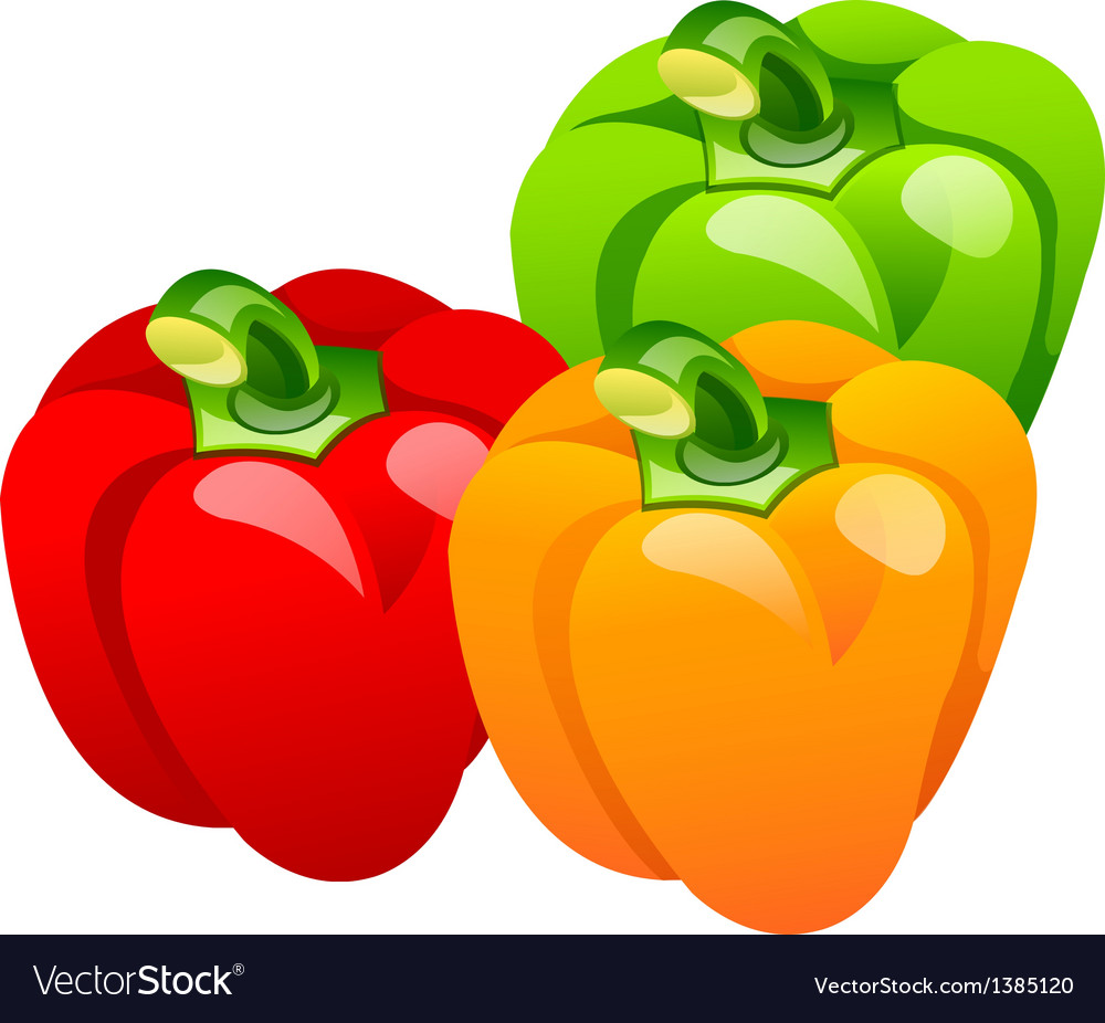 Icon bell pepper vector | Price: 1 Credit (USD $1)