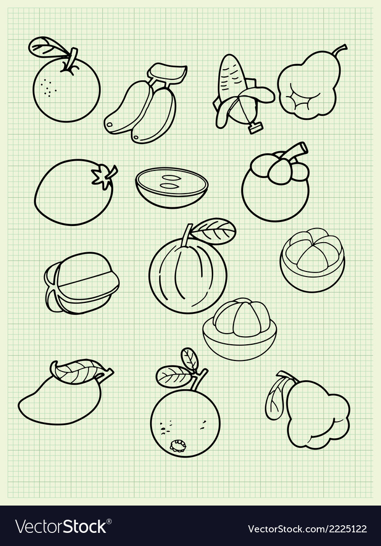Freehand drawing fruit on a graph paper vector | Price: 1 Credit (USD $1)