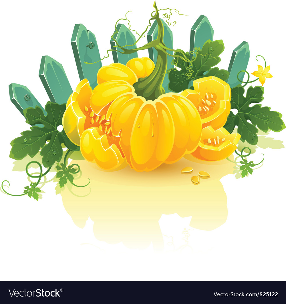 Golden pumpkin vector | Price: 3 Credit (USD $3)