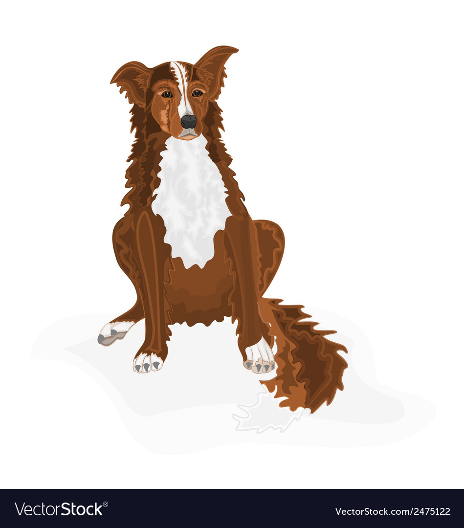 Sitting-dog vector | Price: 1 Credit (USD $1)