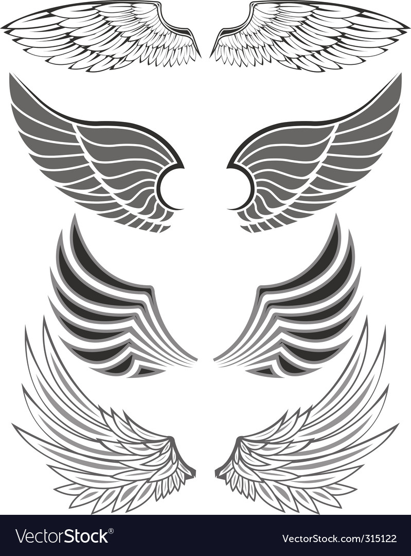 Wings vector | Price: 3 Credit (USD $3)