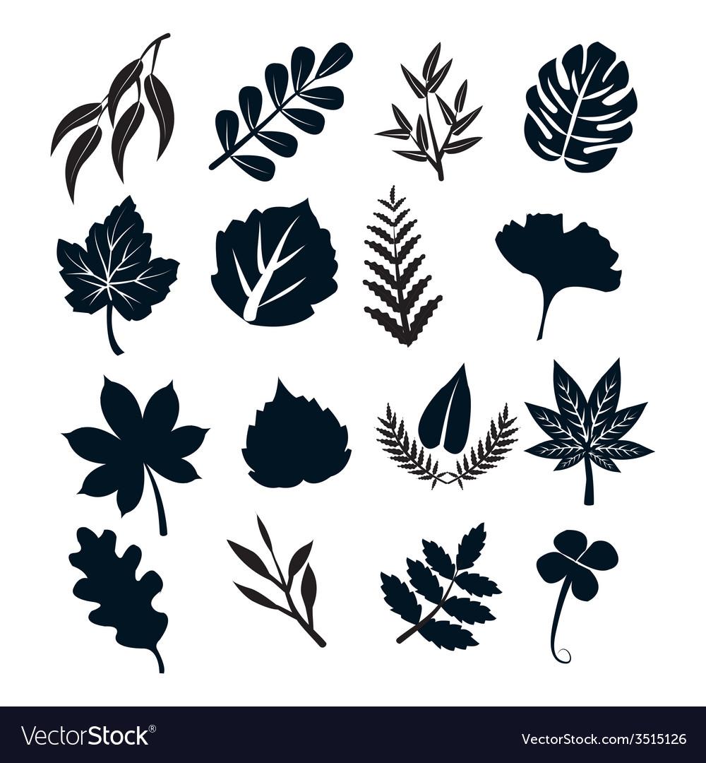 Black leaf symbols vector | Price: 1 Credit (USD $1)