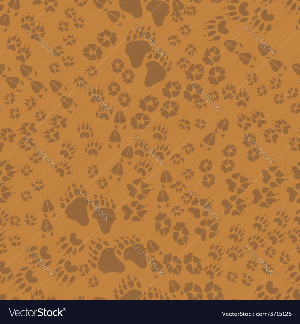 Seamless pattern of animal trails vector | Price: 1 Credit (USD $1)