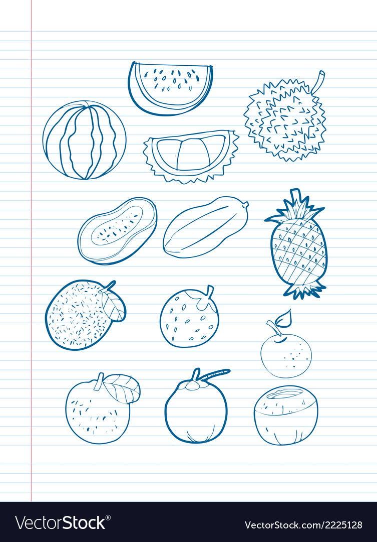 Freehand drawing fruit on a sheet vector | Price: 1 Credit (USD $1)