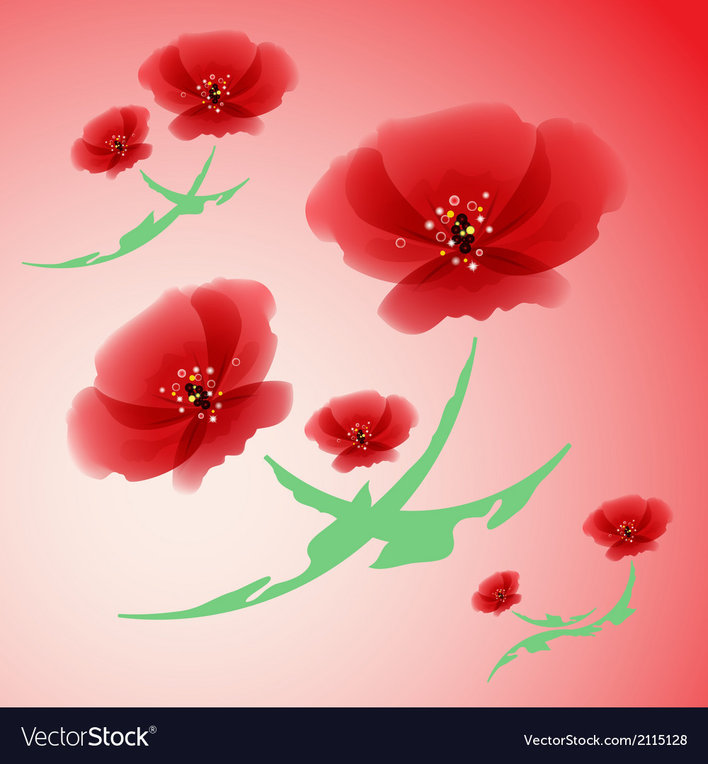 Poppy flowers vector | Price: 1 Credit (USD $1)