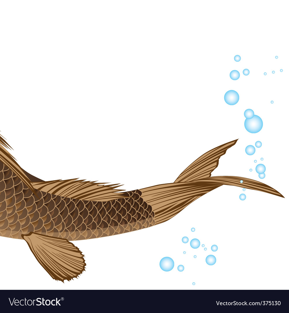 Tail carp vector | Price: 1 Credit (USD $1)