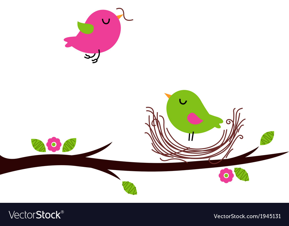 Cute spring nesting birds isolated on white vector | Price: 1 Credit (USD $1)