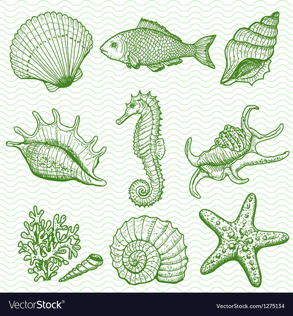 Sea collection original hand drawn vector | Price: 1 Credit (USD $1)