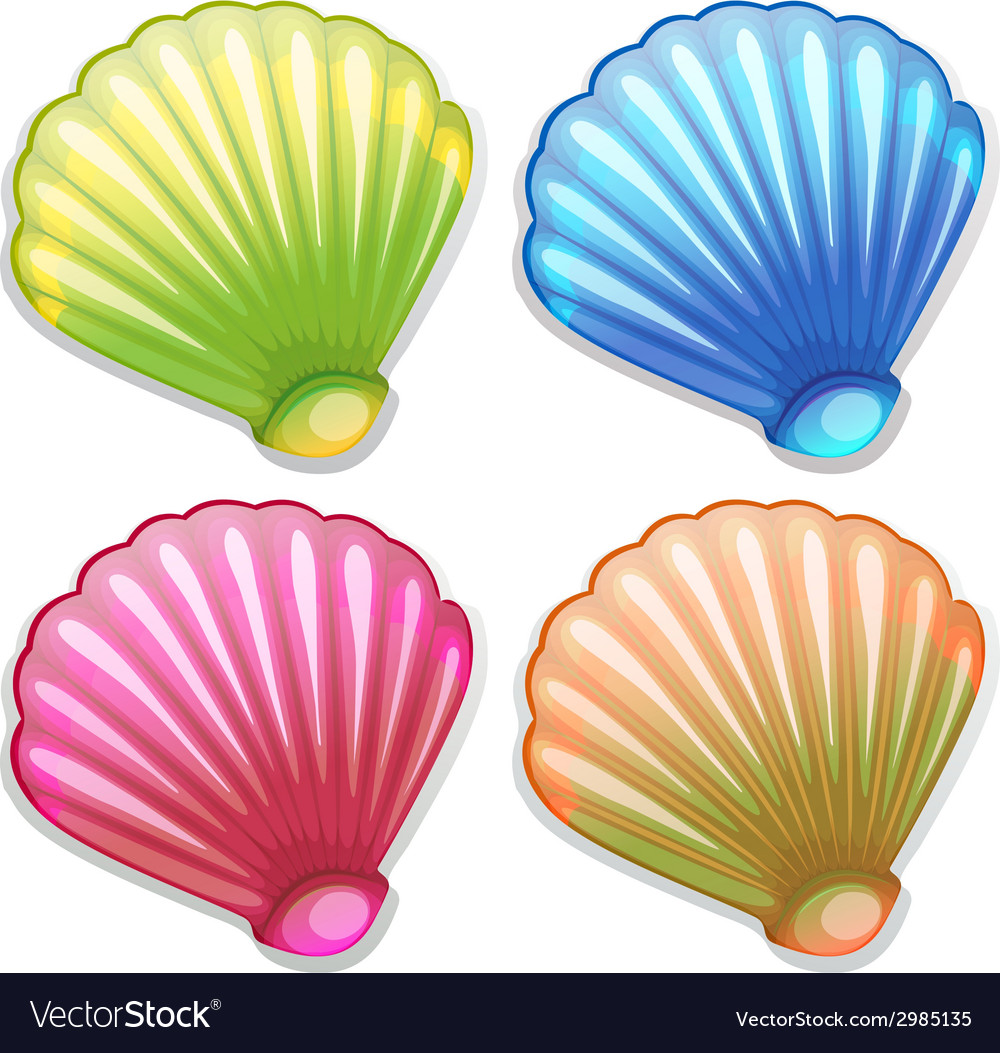 Colourful shells vector | Price: 1 Credit (USD $1)