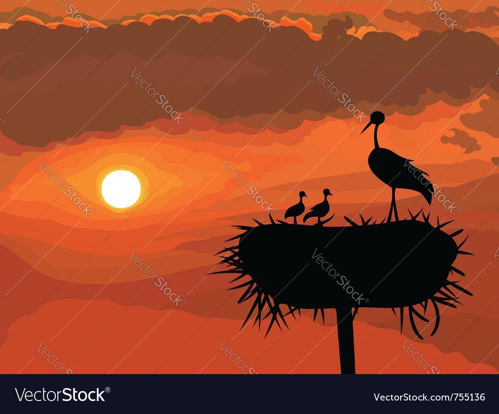 Storks nest vector | Price: 1 Credit (USD $1)