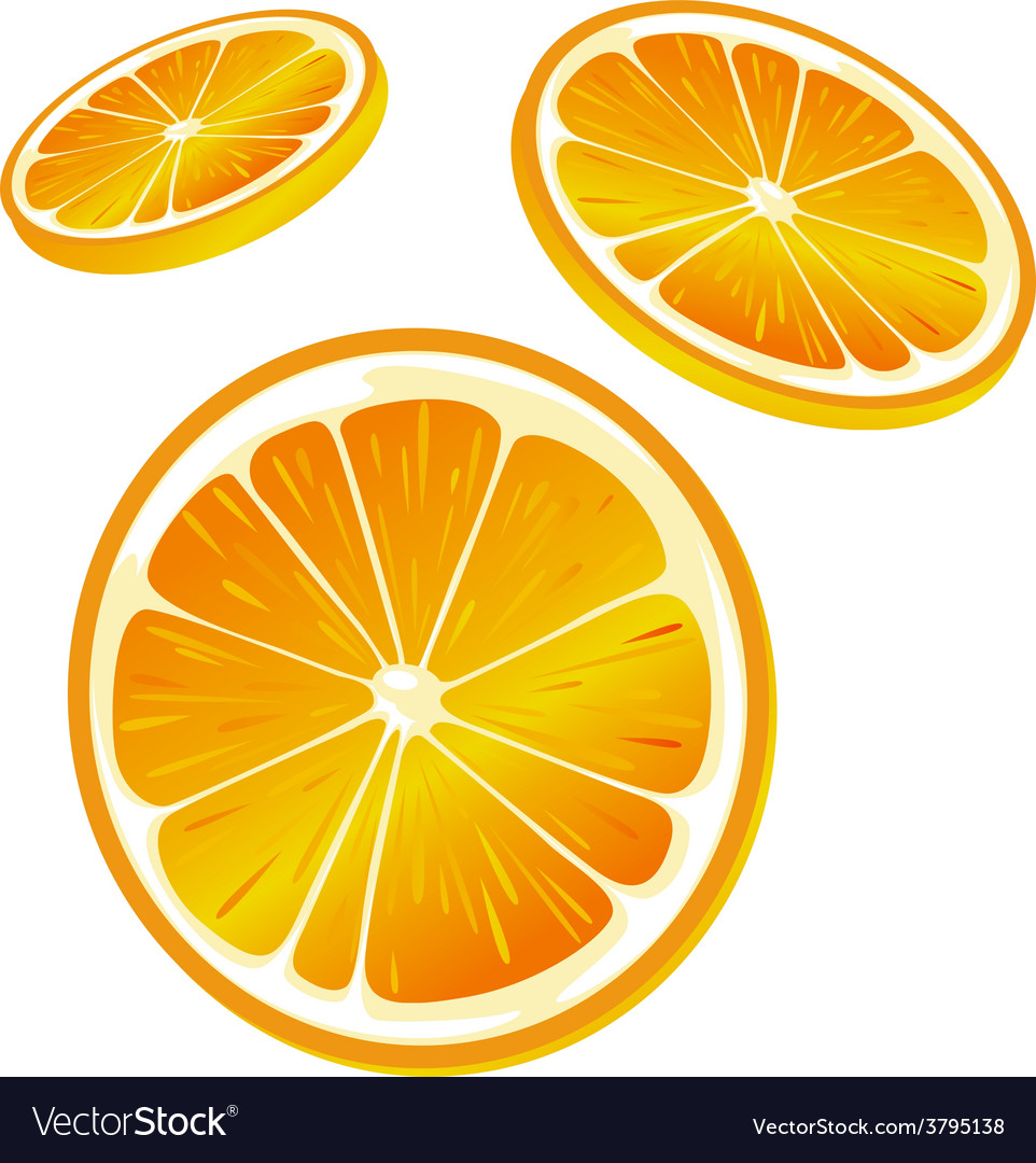 Orange slice - isolated on white background vector | Price: 1 Credit (USD $1)