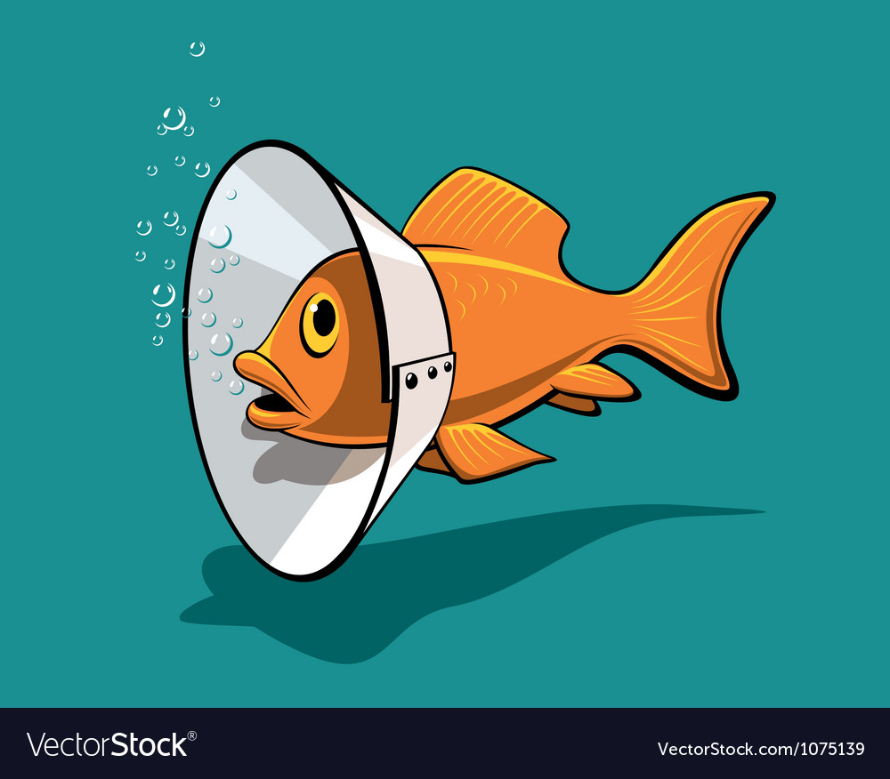 Fish collar vector | Price: 3 Credit (USD $3)