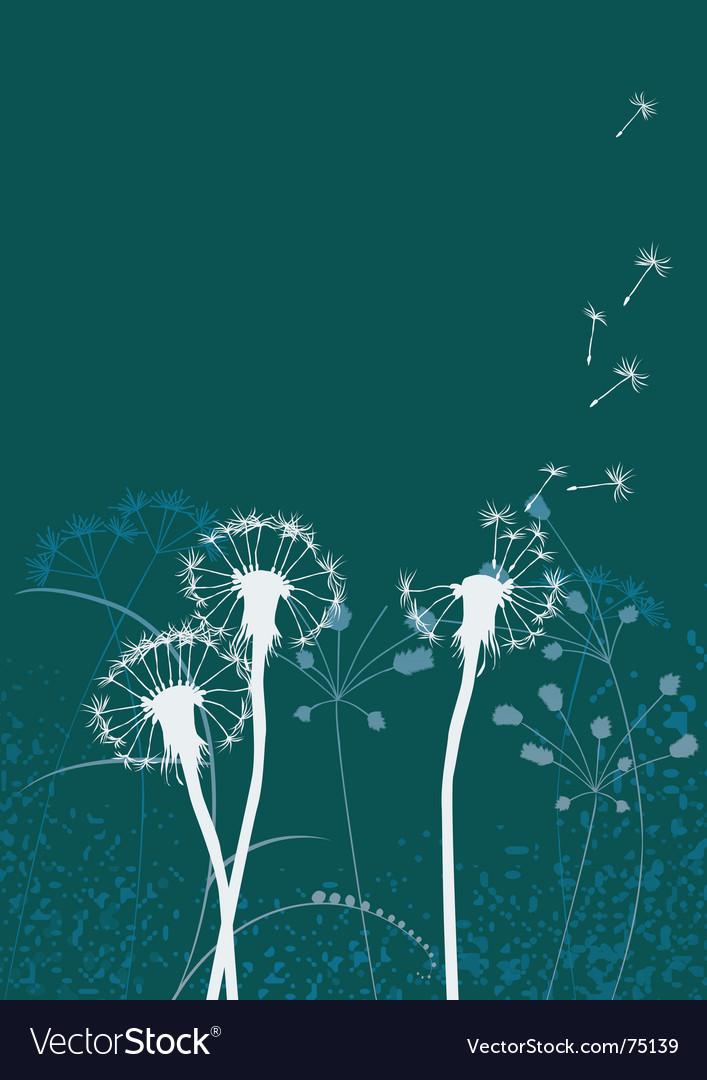 Floral background dandelion vector | Price: 1 Credit (USD $1)