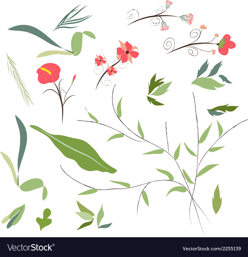 Set of florals and ribbon vector | Price: 1 Credit (USD $1)