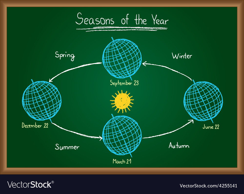 Seasons of the year on chalkboard vector | Price: 1 Credit (USD $1)