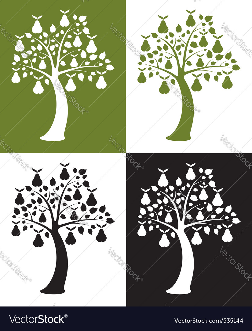 set of pear trees vector | Price: 1 Credit (USD $1)