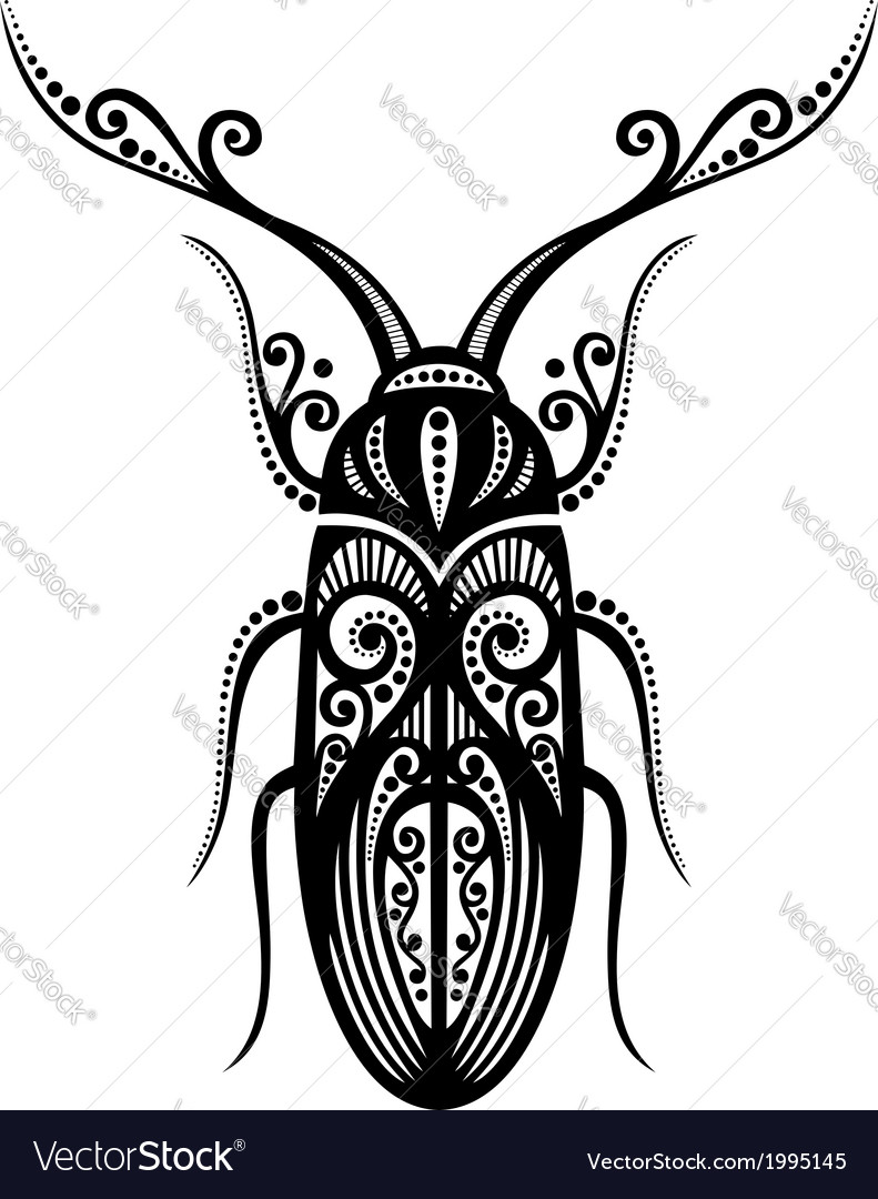 Beautiful beetle exotic insect vector | Price: 1 Credit (USD $1)