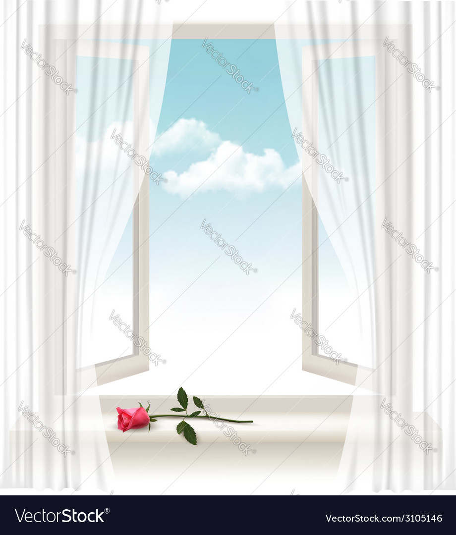 Background with an open window and a red flower vector | Price: 1 Credit (USD $1)