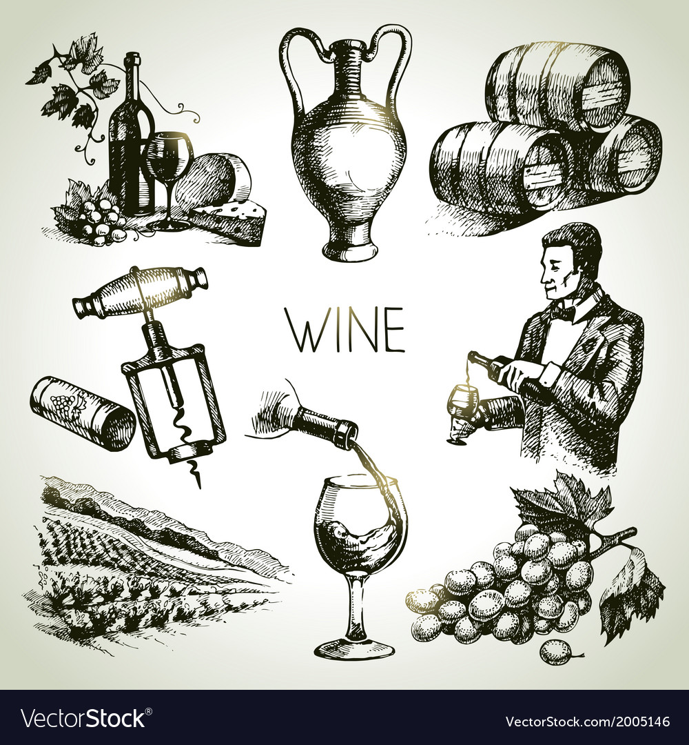 Hand drawn sketch wine set vector | Price: 1 Credit (USD $1)