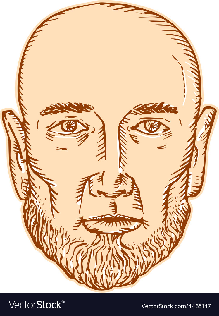 Male bald head bearded etching vector | Price: 1 Credit (USD $1)