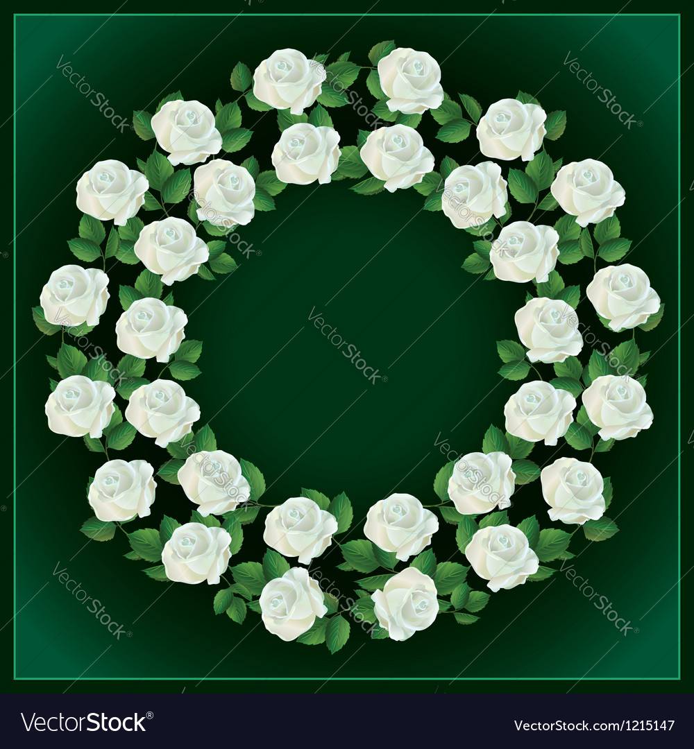 Ornament of white roses element for design vector | Price: 1 Credit (USD $1)
