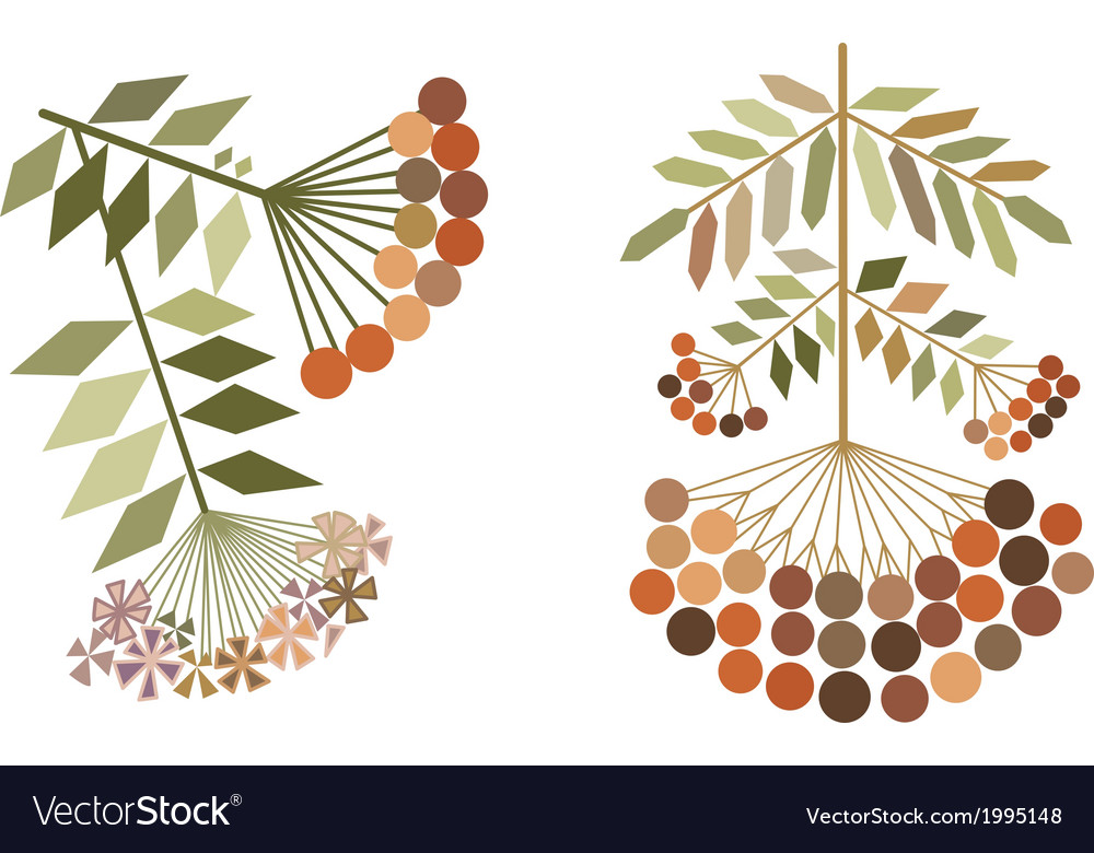 Color rowan branches stylization vector | Price: 1 Credit (USD $1)