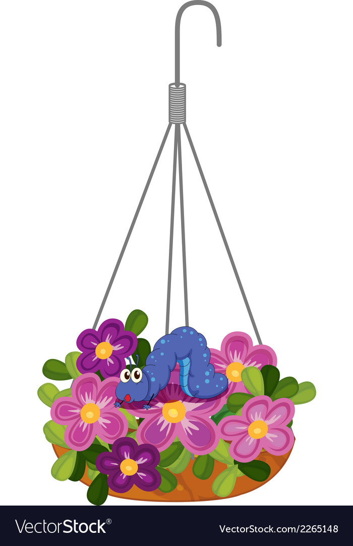 Hanging plants with a caterpillar vector | Price: 1 Credit (USD $1)