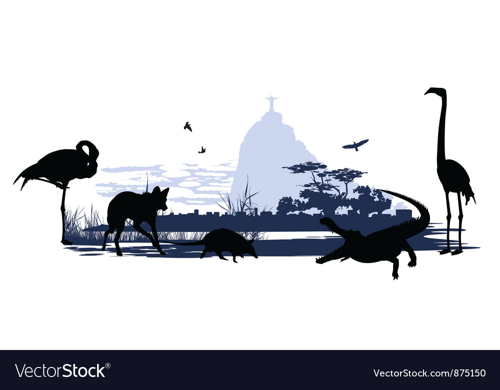 Wild animals and birds in brazil vector | Price: 1 Credit (USD $1)