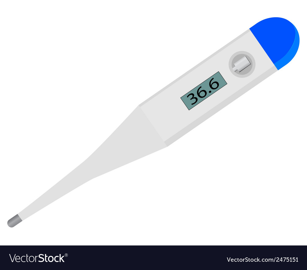 Electronic digital thermometer vector | Price: 1 Credit (USD $1)