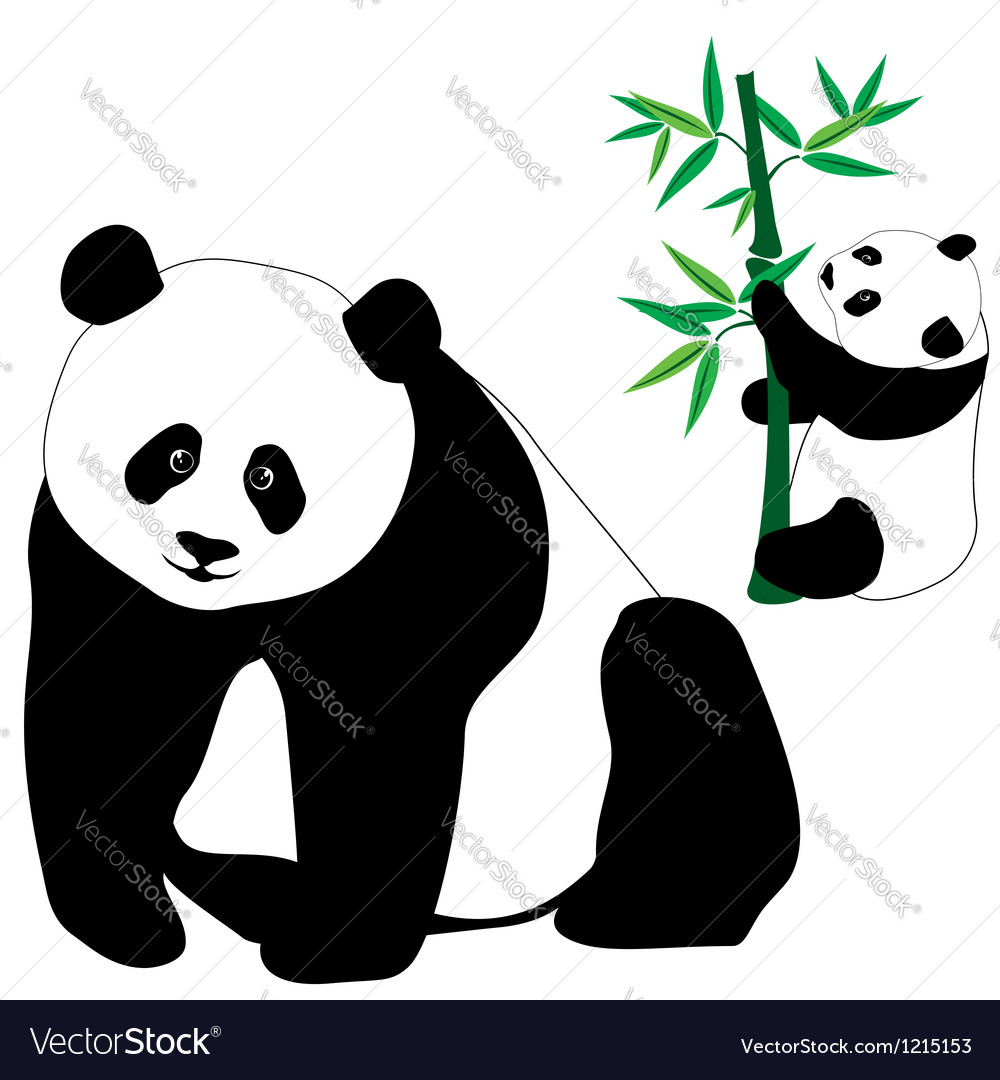 Set of cute panda bears with bamboo vector | Price: 3 Credit (USD $3)