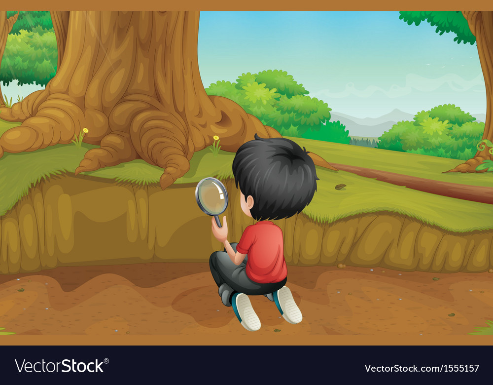 A boy studying the ground in the forest vector | Price: 1 Credit (USD $1)