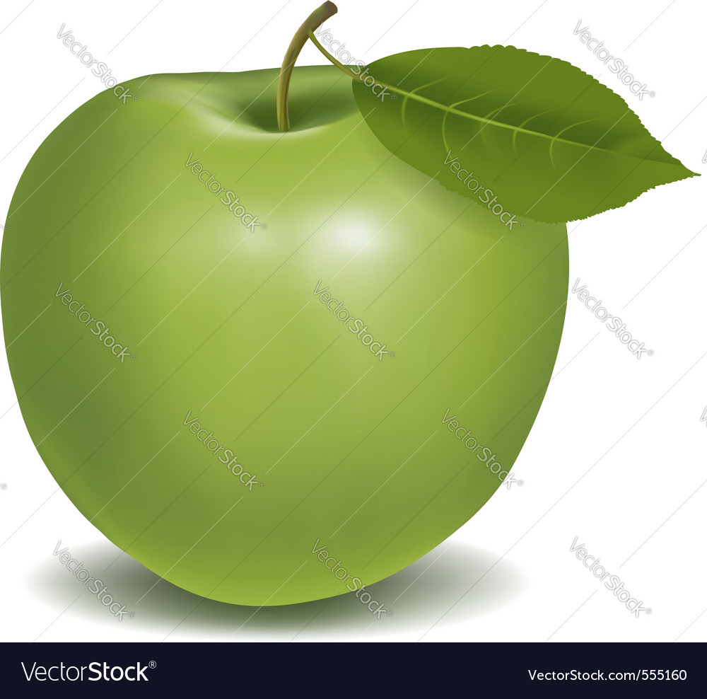 Fresh green apple vector | Price: 1 Credit (USD $1)