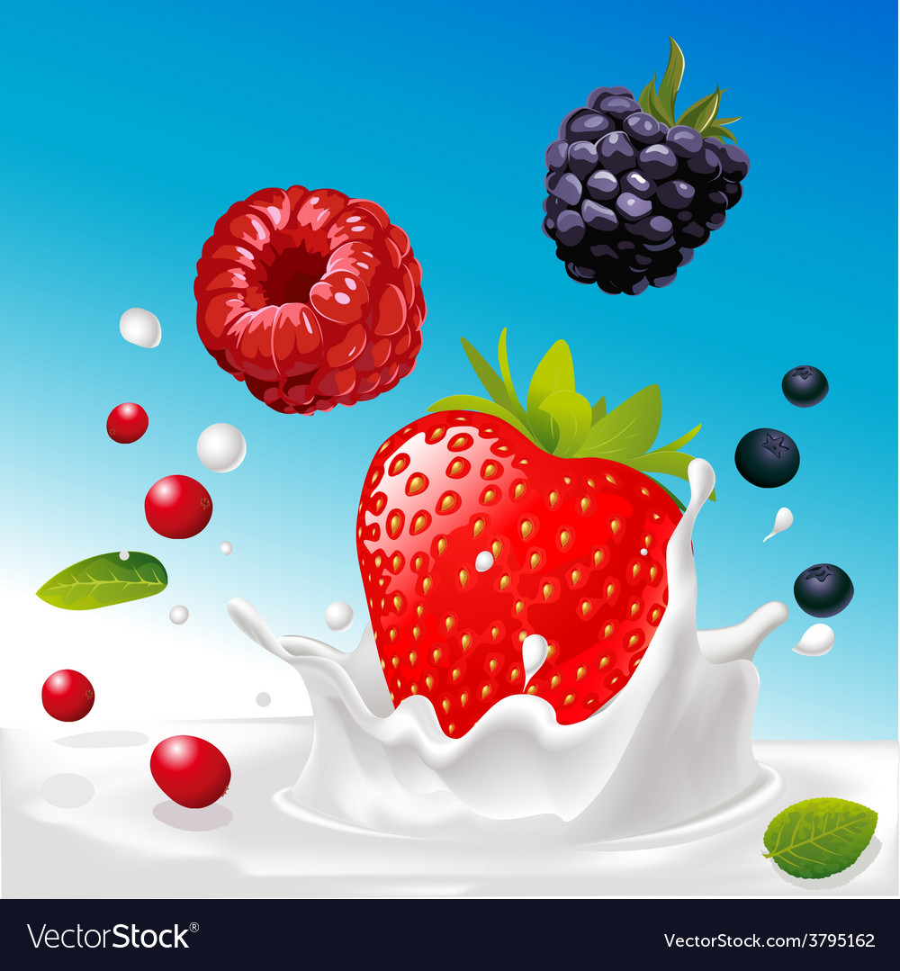 Splash of milk with forrest fruit mix - with vector | Price: 1 Credit (USD $1)