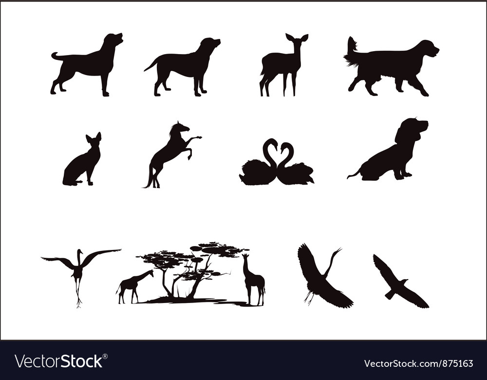 Silhouettes of wild animals and pets in black and vector | Price: 1 Credit (USD $1)