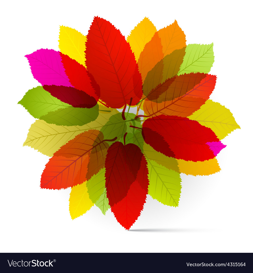 Transparent colorful leaves vector | Price: 1 Credit (USD $1)