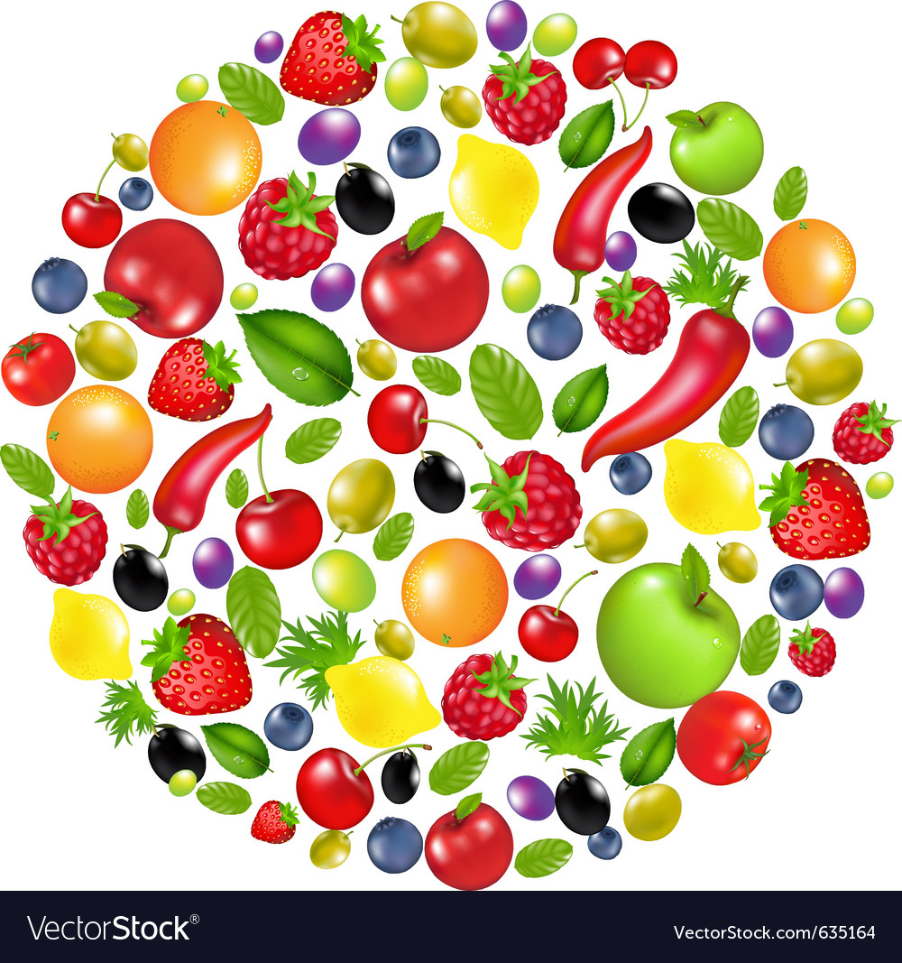 Vegetable circle vector