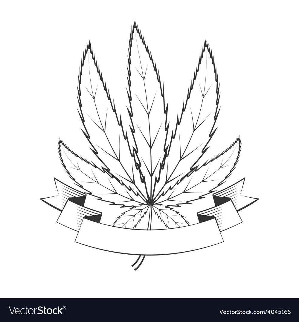 Cannabis green leaf vector | Price: 1 Credit (USD $1)