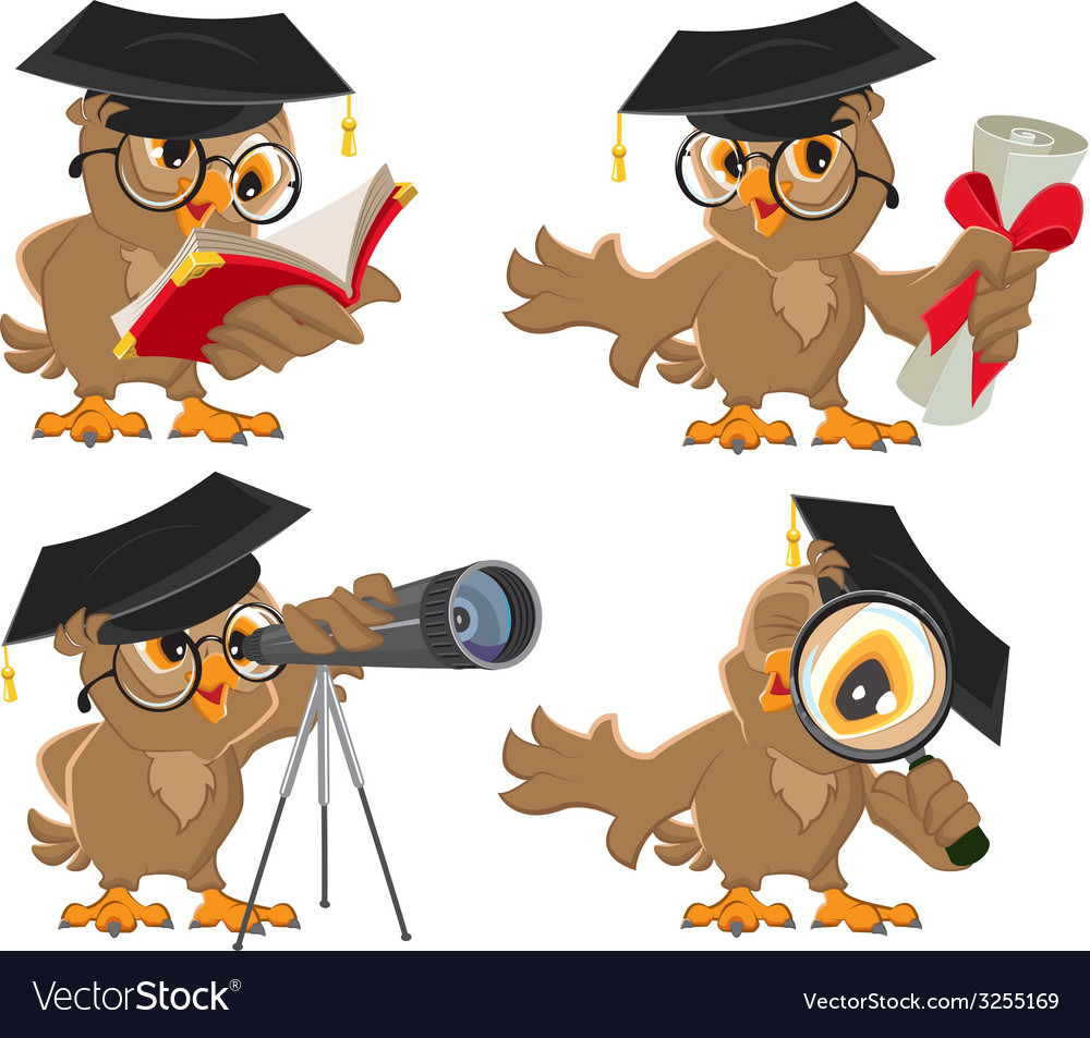 Set owl vector | Price: 1 Credit (USD $1)