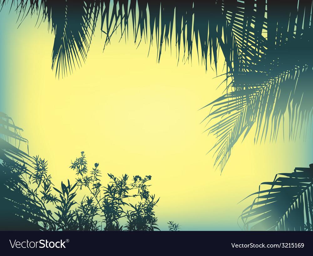 Silhouette plam plant vector | Price: 1 Credit (USD $1)
