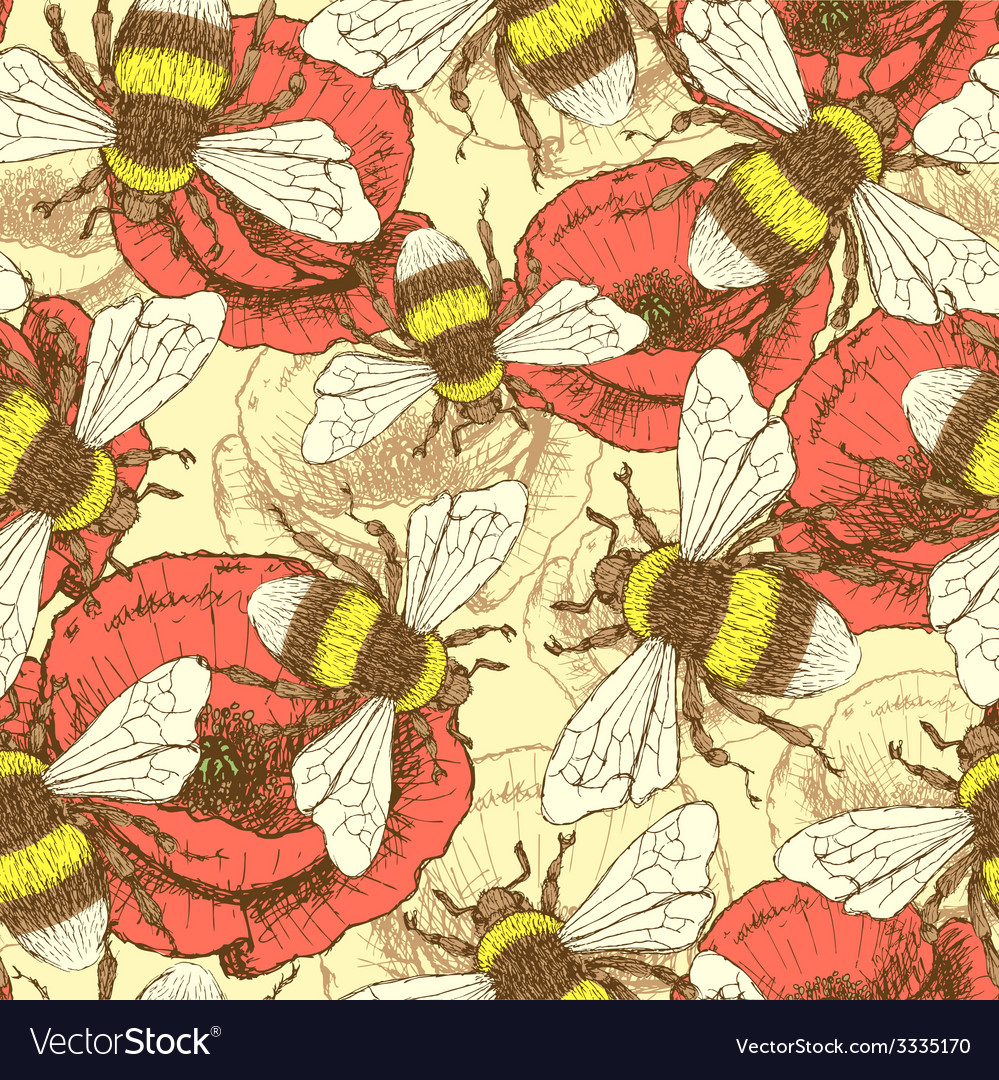 Sketch bee and poppy in vintage style vector | Price: 1 Credit (USD $1)