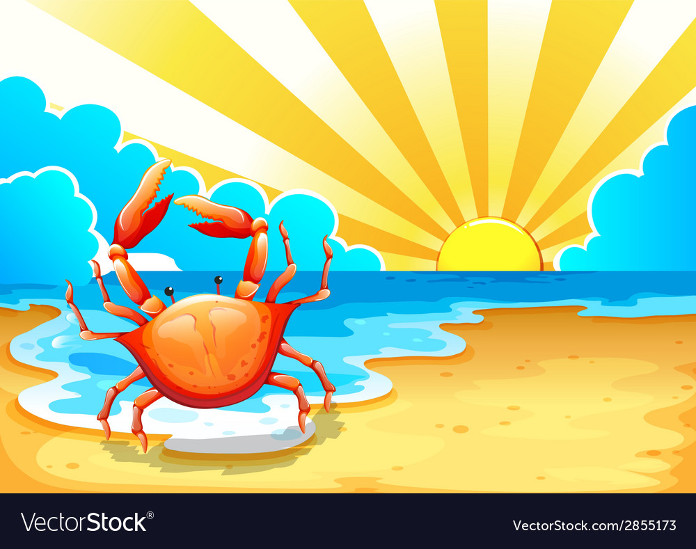 A beach with a crab vector | Price: 1 Credit (USD $1)