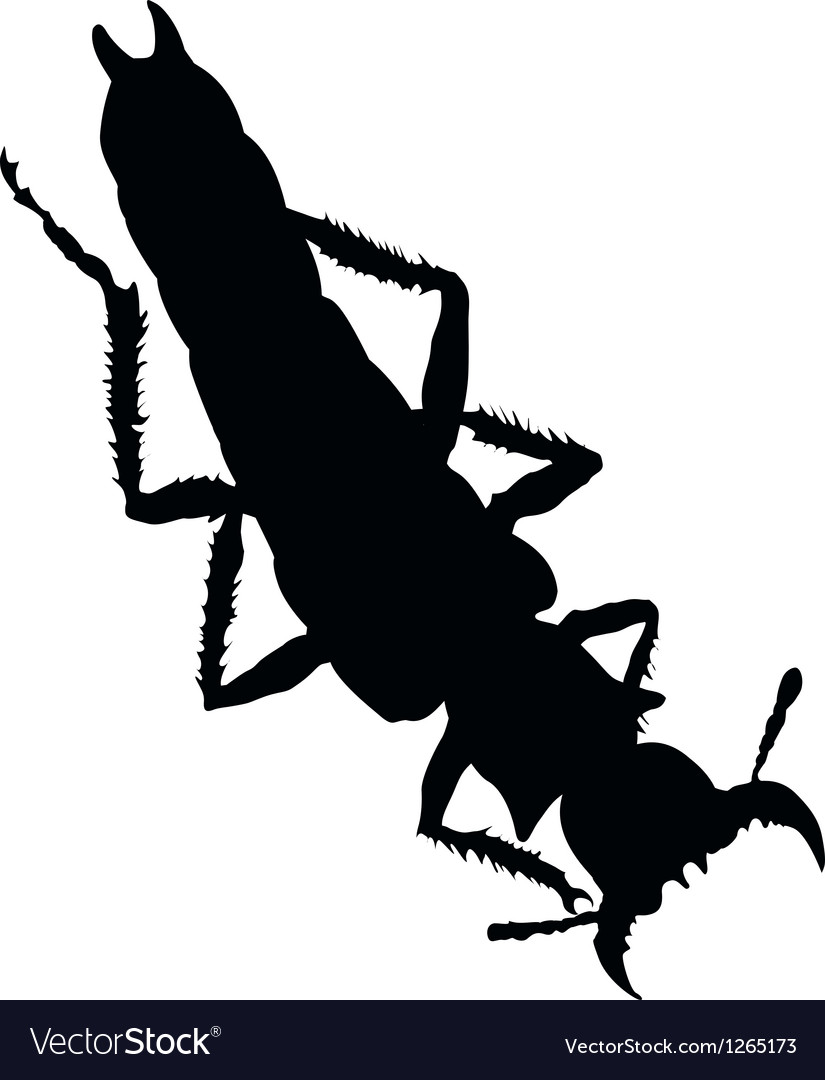 Bug silhouette vector | Price: 1 Credit (USD $1)