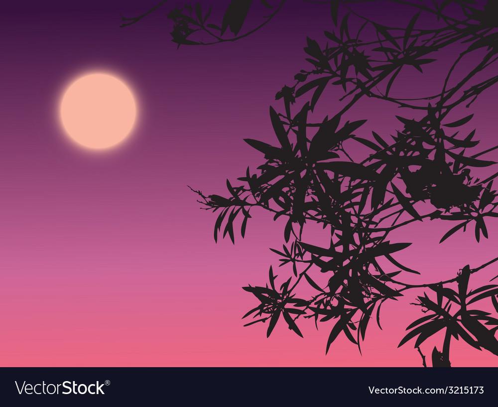 Silhouette plant vector | Price: 1 Credit (USD $1)